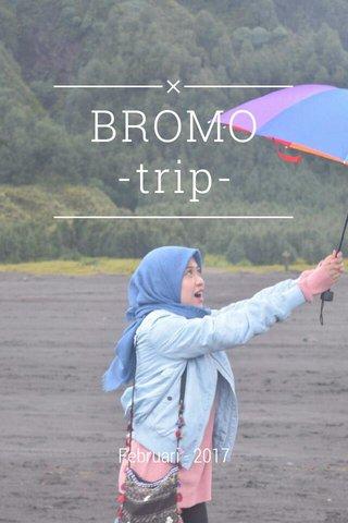 BROMO -trip- Februari - 2017