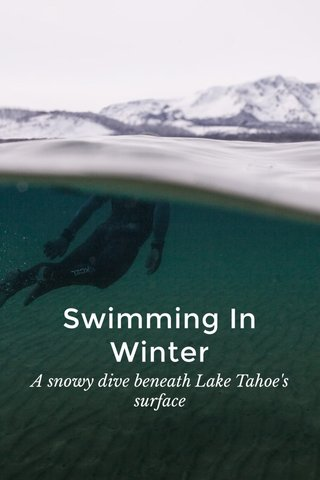 Swimming In Winter A snowy dive beneath Lake Tahoe's surface