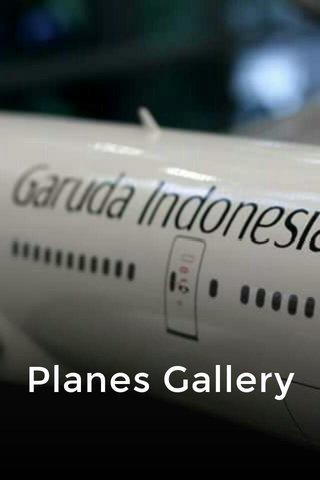 Planes Gallery