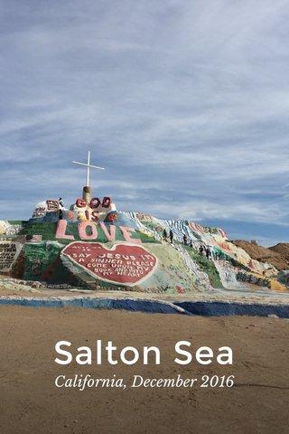 Salton Sea California, December 2016