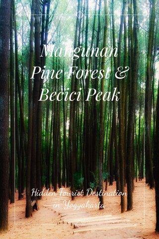Mangunan Pine Forest & Becici Peak Hidden Tourist Destination in Yogyakarta