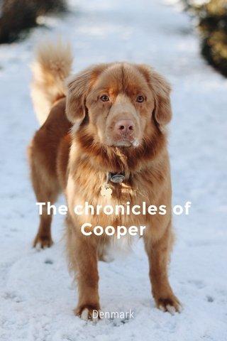 The chronicles of Cooper Denmark