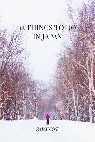 12 THINGS TO DO IN JAPAN | PART ONE |