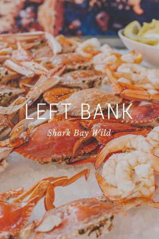 LEFT BANK Shark Bay Wild