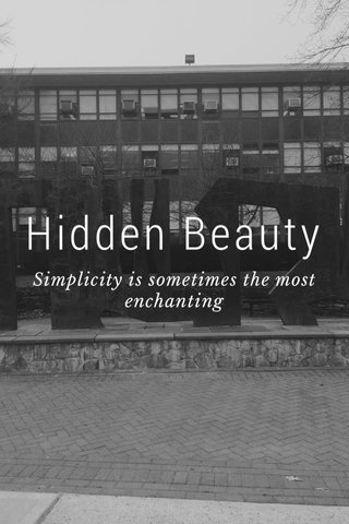 Hidden Beauty Simplicity is sometimes the most enchanting