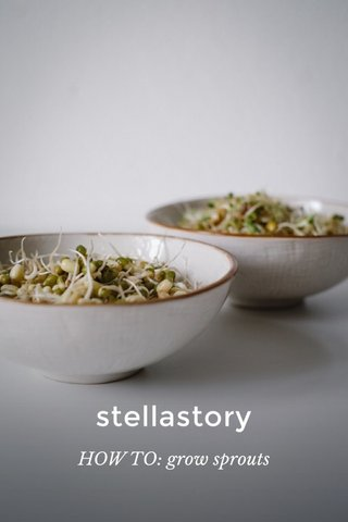 stellastory HOW TO: grow sprouts