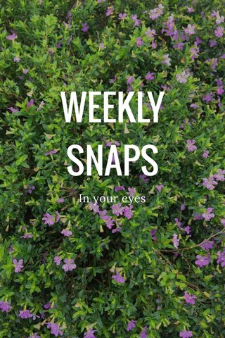 WEEKLY SNAPS In your eyes #seewhatisee #stellerstories #life #weekly #fun