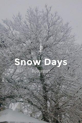 Snow Days Bridgeport