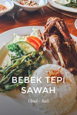 BEBEK TEPI SAWAH Ubud - Bali