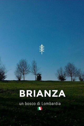 BRIANZA un bosco di Lombardia 🇮🇹